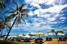 Free stock photo of beach, beach chairs, cloudscape