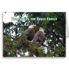 =>Sale on          	Welcome to the Eagle Family, Bald Eagles Card           	Welcome to the Eagle Family, Bald Eagles Card in each seller & make purchase online for cheap. Choose the best price and best promotion as you thing Secure Checkout you can trust Buy bestThis Deals          	Welcome t...Cleck Hot Deals >>> http://www.zazzle.com/welcome_to_the_eagle_family_bald_eagles_card-137832203544364624?rf=238627982471231924&zbar=1&tc=terrest