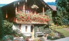 SWISS CHALET. Hang crawling plants from the roof, on the fence and on hooks on the wall/column to get an awesome effect.