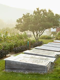 Antique cold frames allow seeds to be started outdoors in April.