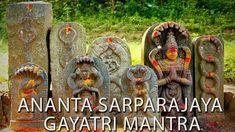 Ananta Sarparajaya [Snake] Gayatri Mantra - Must Listen to Neutralize Kala Sarpa Dosha & Naga Dosha Gayatri Mantra, Snake, Charts, God, Dios, Graphics, A Snake, Graph Of A Function, Allah