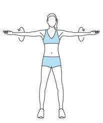 Círculos con brazos extendidos 30 segundos con círculos hacia adelante 30 segundos con círculos hacia atrás