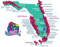 map of central florida gulf coast - Google Search | Places to go ...