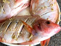 Mojarra Frita - AntojandoAndo Fish, Meat, Fashion, Fried Fish, Coconut Rice, Juices, Moda, Fashion Styles, Pisces