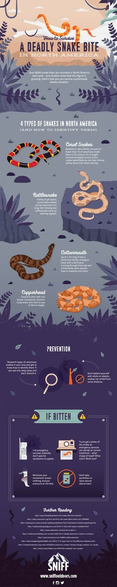 Survive Snake Bites with This Helpful Infographic   How To Identify and What to do if you encounter a Poisonous Snake, check it out at http://survivallife.com/snake-bites-infographic/