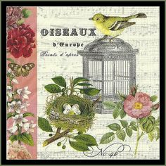 Nostalgic Bird Paper Napkins Decoupage Tissue Paper Scrapbooking Paper Mixed Media Altered Art Fancy Dinner Napkins on Etsy, $4.50