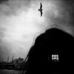 Elif Gulen