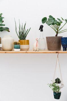 studio spaces: rena noordermeer.