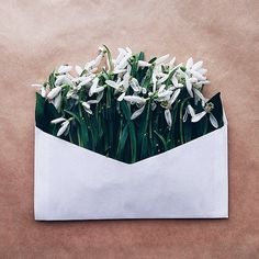 "Sending Letters of Beauty with #envelope_series    For more from Anna's envelope series, follow @annaremarchuk and browse the #envelope_series hashtag on Instagram.     Not long after Kiev-based photographer Anna Remarchuk (@annaremarchuk) found a bunch of old envelopes that belonged to her great-grandfather, she received a gift of snowdrops in the post. ""At the table there were those envelopes. I saw them together and decided to make a photo,"" she says. The simple combination gave birth to…"