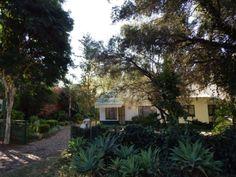 Boshoff Street Guest House in Modimolle Pretoria, Nature Reserve, Bird, Street, Plants, House, Home, Birds, Plant