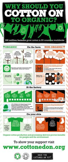 Cottoned On Infographic new