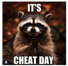 Mwahaha! It's cheat day for the meme raccoon.