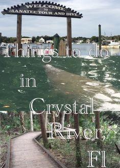 RV/ Adventure/ Lifestyle/ People Lover/ Blogger