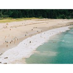 All of the beach scenes this summer by alice_gao