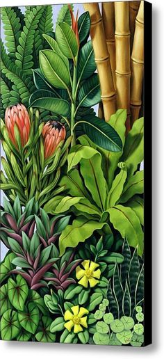 Foliage Iii Canvas Print / Canvas Art By Catherine Abel