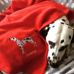 Personalised Embroidered Silhouette Fleece Blanket Wrap For Dogs And Cats Name Personalisation Red Pink Blue Brown Black Cream Gray Purple Cosy, Snug, Your Pet, Bones, Embroidery Designs, Silhouette, Blanket, Pets, Interior