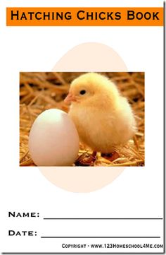 Free Printable Baby Chicken Hatching Observation Book