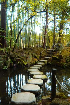 Private garden in Kyoto, Japan - I love stepping stones :)