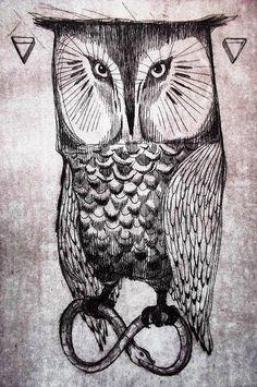 owl by Melissa Moscatelli