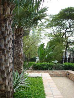 Composição para jardim de um Edifício residencial.