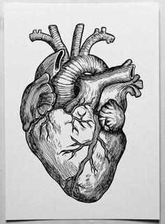 Heart A4 Poster of my original ink drawing by DIANASTANGA on Etsy, €12.01
