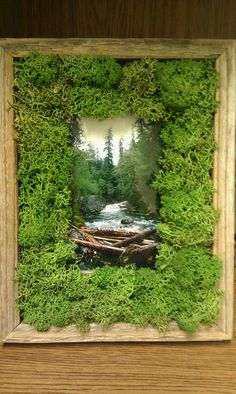 Rustic moss frame, with picture from the Olympic Peninsula, WA. Brightens up my office at school!