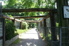 In Leverkusen: Reuschenberger Tierpark