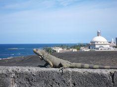 Puerto Rico - San Juan - Fuerte San Cristóbal