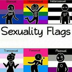 This makes me mad. Look at the heterosexual flag. Why is it so dark and sad? I very much support the LGBT movement, but this is horrible. No sexuality or lifestyle should be frowned upon<<< agreed Lgbtq Flags, Straight People, Lgbt Rights, Fun Comics, Gay Pride, Transgender, Lesbian, Anime, Sad