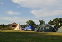 Whitlingham Broad Campsite, Norwich, Norfolk | Campsite Reviews and Offers | Pitchup.com