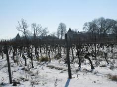 Snow in February 2012 in Juillac-le-Coq