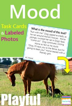 """Determine Mood of Texts task cards and vocabulary photo match. Play as scoot, search the room, or center. """"What am I"""" clues match to labeled photographs showing each described mood. Students infer about the described mood and record answers. Supports ELL and visual learners! Vocab pictures included: calm cheerful crushed exhausted free grumpy lonely playful refreshed relaxed"""
