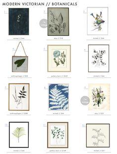 Our favorite botanical art #wallart #botanicals #modernvictorian