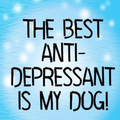 The best anti-depressant is my dog! #dog #dogquotes #puppy