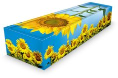 Sunflower coffin - environmentally friendly.  (cardboard)