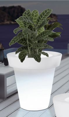 Maceta de diseño con iluminación para exterior. Perfecta para iluminar y crear ambientes de tipo Chill Out en terrazas y jardines.