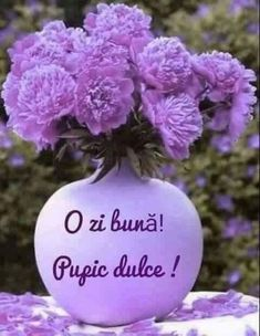 Clara Alonso, Cute Gif, Shades Of Purple, Good Advice, Good Morning, Cool Pictures, Christmas Bulbs, Holiday Decor, Flowers