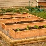 cedar_raised_garden_beds
