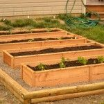 Raised Garden Beds for herbs and greens - this is a great design and I could use pallets - but like the pea gravel around for drainage and to keep weeds out.