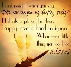 """I Do Adore"" By Mindy Gledhill FAVORITE SONG IN THE WHOLE  WIDE WOLRD!!!!!!!!!! ♥♥♥♥♥♥♥ (See what I did there?)"