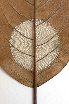 Susanna Bauer crocheted leaf... a leaf is so fragile... How did she do that? It's unbelievable!