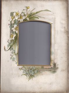 Lovely Chromolithograph Page From Victorian Photo Album, Daffodils, Cabinet Photograph