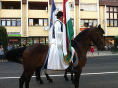 Cazare Hajduszoboszlo : Duminica a fost o parada cu cai