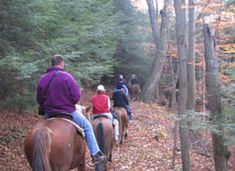 Enjoy scenic trail rides on horseback at Uncle Buck's Riding Stable and Dance Barn