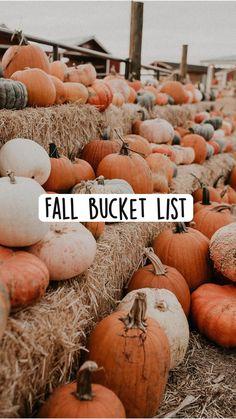 Halloween Themes, Fall Halloween, Fall Room Decor, Autumn Aesthetic, Fall Is Here, Fall Wallpaper, Happy Fall Y'all, Autumn Activities, Fall Season