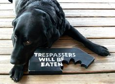 Man Cave, Sign, Trespassers Will Be Eaten, Beware of Dog, Made to Order, Free Shipping. $28.00, via Etsy.