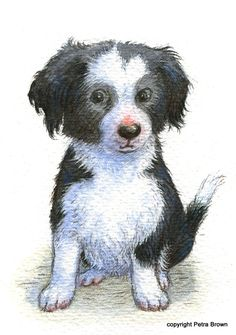 """Collywobble""... Petra Brown, Children's Book Illustrator"