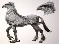 Image result for hippogriff
