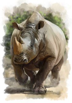 Rhino by Kajenna on DeviantArt Jungle Animals, Animals And Pets, Animal Paintings, Animal Drawings, Rhino Art, Especie Animal, Most Beautiful Animals, African Animals, African Rhino