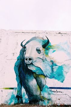 buffalo mural in Philadelphia, (Northern Liberties at 2nd Street and Poplar)